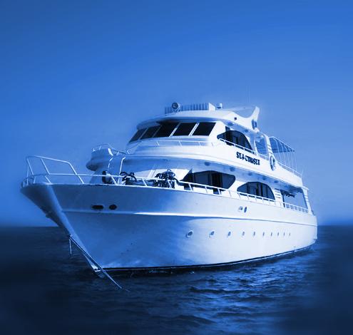 Licencia náutica